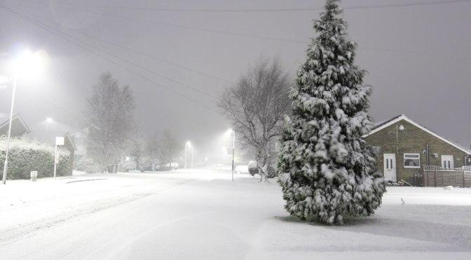 Winter Storm 2009 in Western Kentucky