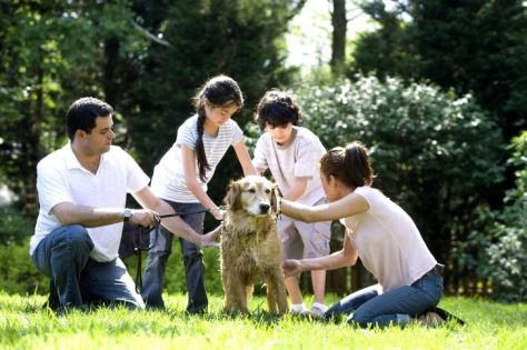 children-washing-dog-outside-725x483